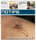 Notife papel Nº 76